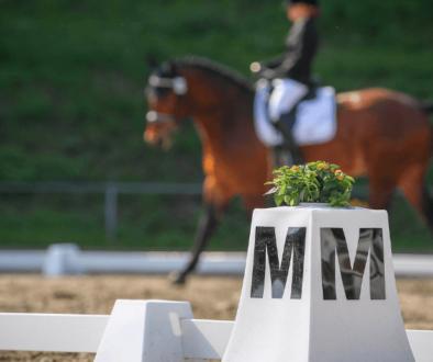 dressage_show_letter_M_horse