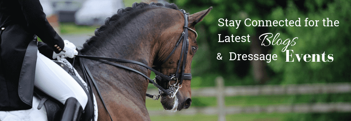 stay_connected_dressage_lifestyle